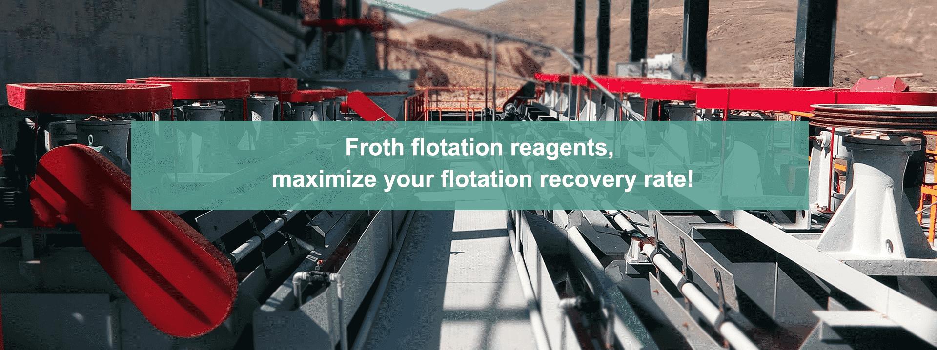 froth flotation reagent